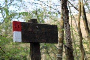 2 trekking lunigiana toscana via volto santo
