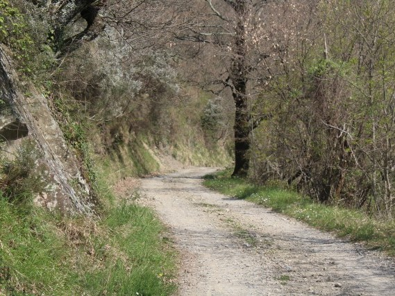 guide percorsi a piedi lunigiana Lucca Toscana