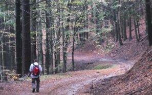 trekking toscana acquerino appennino pistoiese