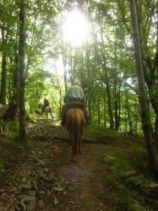 Vacanze Toscana trekking appennino