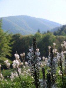 Vacanze Toscana trekking appennino 3