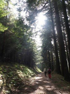 Vacanze Toscana trekking appennino 8