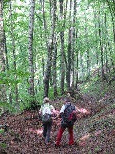 Vacanze Toscana trekking appennino 7