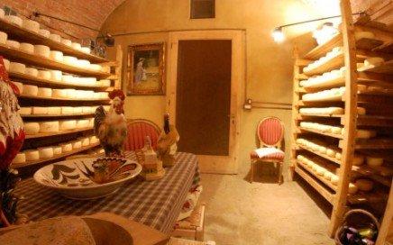 tour enogastronomico pisa degustazione formaggi toscana