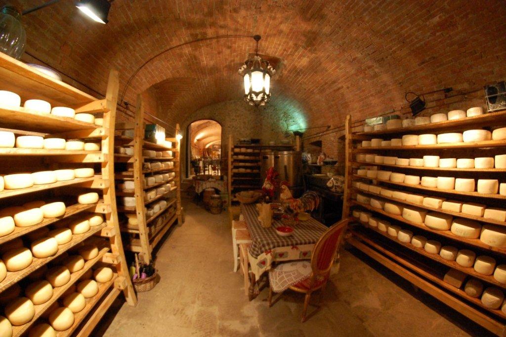 wine tour Tuscany cheese degustazioni Pisa