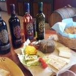 Degustazione vini Toscana