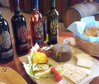 wine tour pisa degustazioni vino chianti
