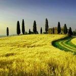 Vacanze in Toscana: Livorno