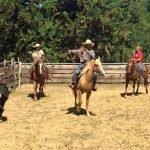 escursioni cavallo pisa western