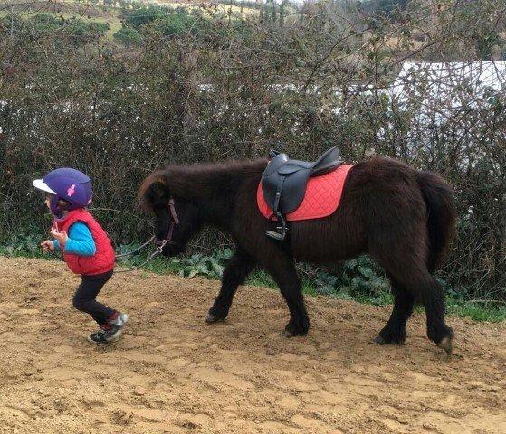 escursioni cavallo pisa bambini