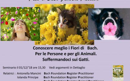 seminario fiori di bach sugli animali gatti