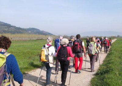 itinerario-trekking-toscana-pisa-livorno-via-navicelli-2