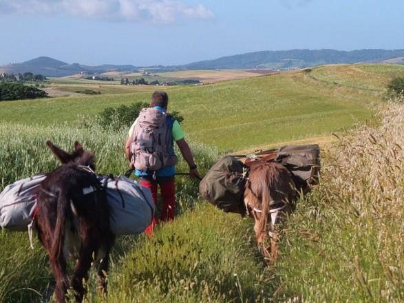 trekking pisa escursioni toscana